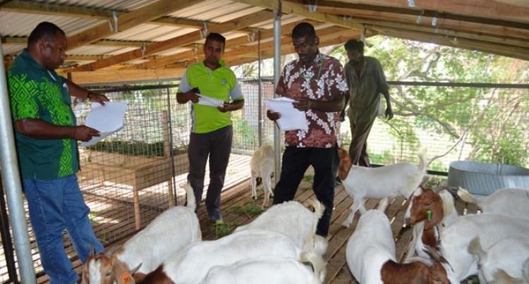 More Fencing Materials For Livestock Farmers