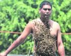 Shalesh, The Bee Man Of Lautoka