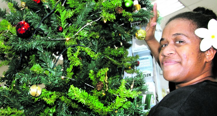 Hunt For Big Tree, Courts Set For A Mega Christmas