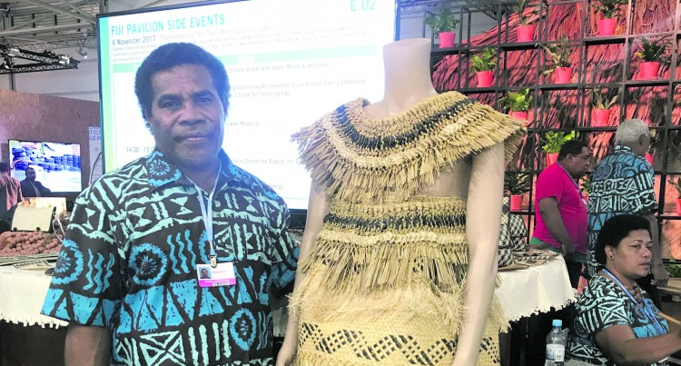 Fijian Artists  Winning Share Of Praise At The Bonn Zone