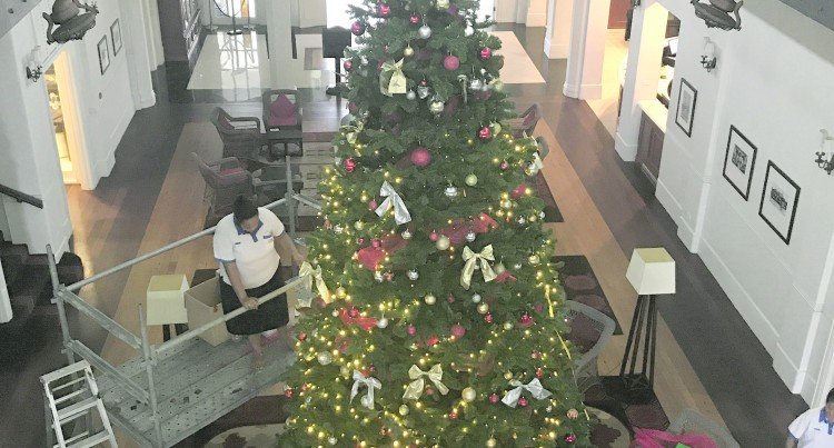 Grand Pacific Hotel to Launch Largest Christmas Tree, Spark the Spirit