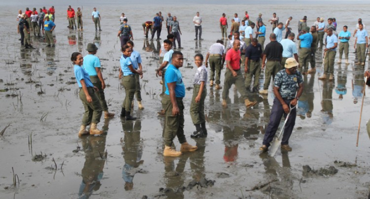 5000 New Mangroves Planted Thanks To RFMF