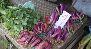 Eggplants selling at $1 a heap. Photos: Vilimoni Vaganalau.