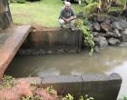 Karan Sends Out Team To Assess Floodgate In Navua Waterway