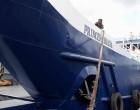 Princess Moana Provides Trucks For Cargo, Luggage