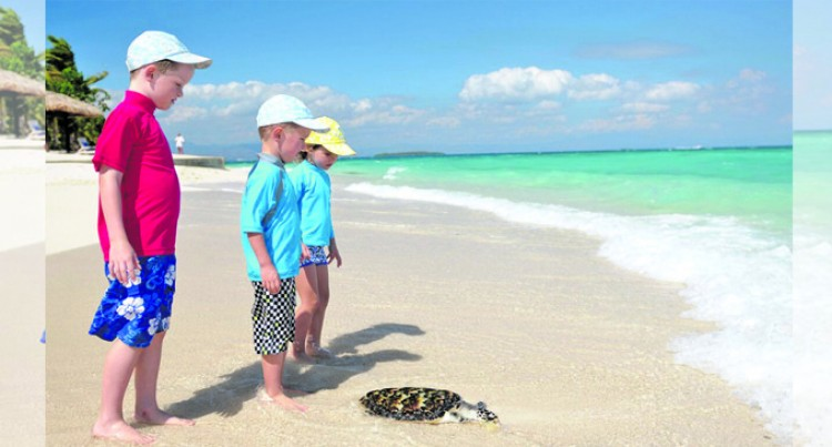 Turtles Puts Island Resort on the Map