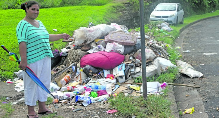 Household Garbage Removal 'Costly'