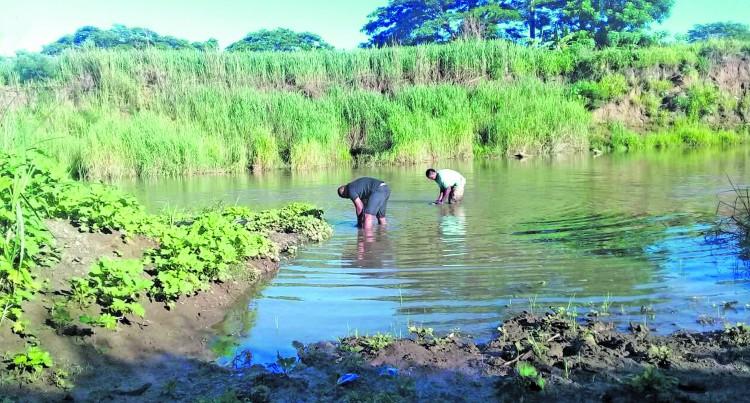 Police Grab Dutt In Swamp