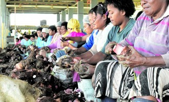 Agriculture Minister On Central Division Tour