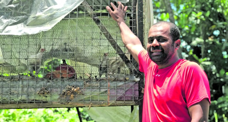 Ratu Kini Plans  To Lift Poultry  Business Higher