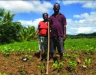 Grant Helps Labasa Farmer Grow Income