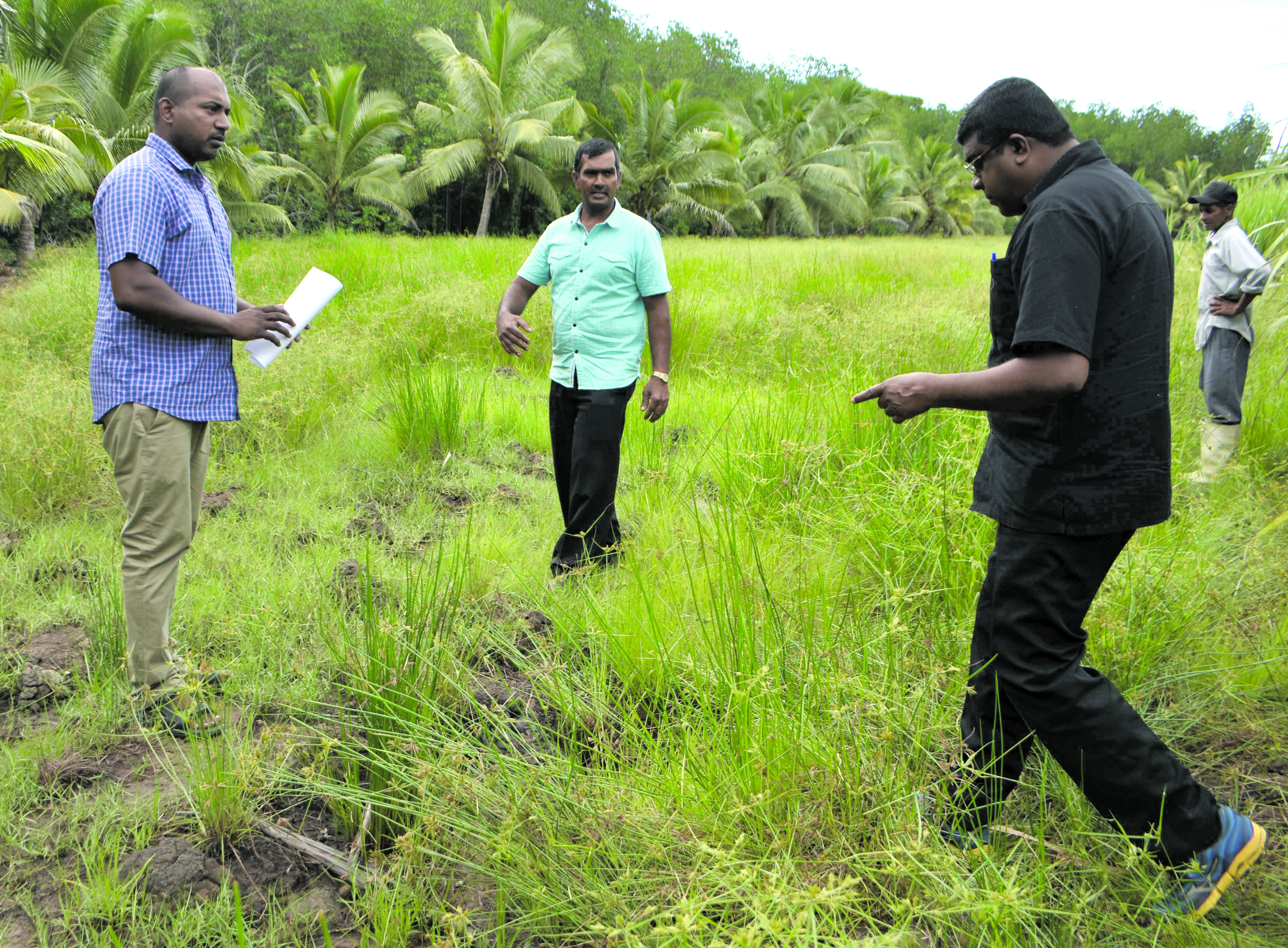 Minister for Waterways Mahendra Reddy (right) with his staff during his field visit to Naqere in Labasa on  January  3, 2018. Photo:Shratika Naidu