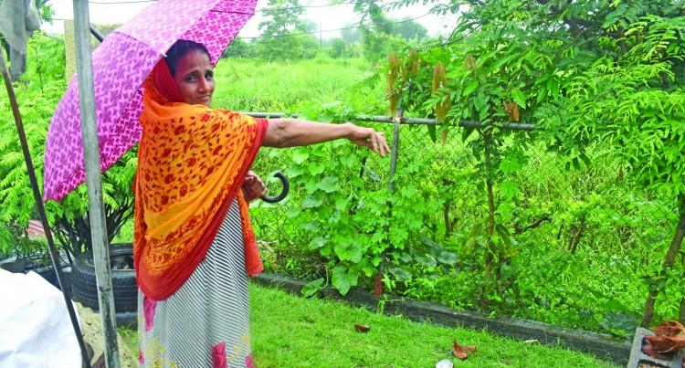 Nadi Drainage Needs Long Term Answer: Ali