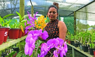 Sujita's Hobby Blooms Into A Profitable Entity