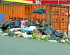 Narere residents complain of uncollected rubbish