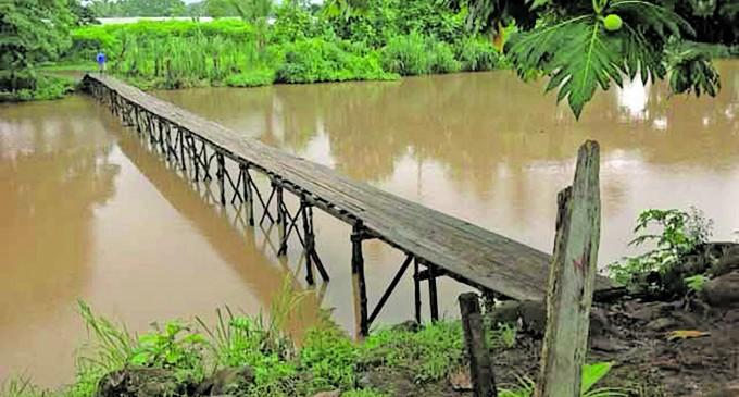 Build us a stronger bridge, Bua chief pleads authorities