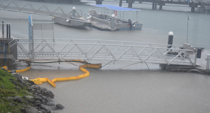 Fuel spillage was evident at the Port Denarau Marina on Monday, February 26. Photo: Waisea Nasokia