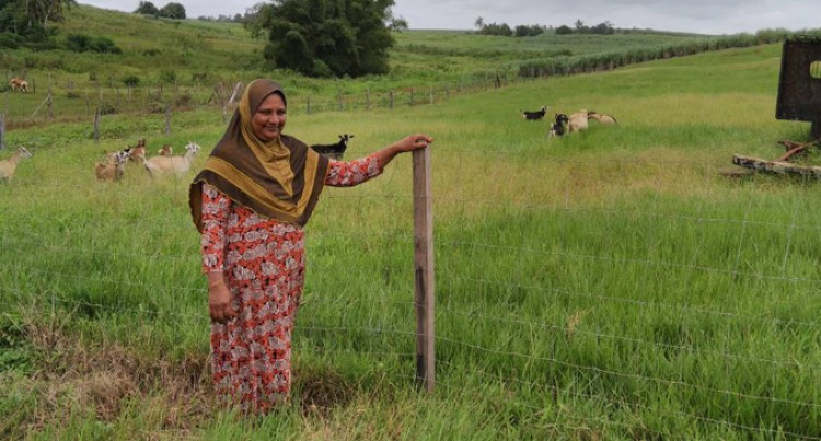 Grant Helps Bano Thrive as Livestock Farmer