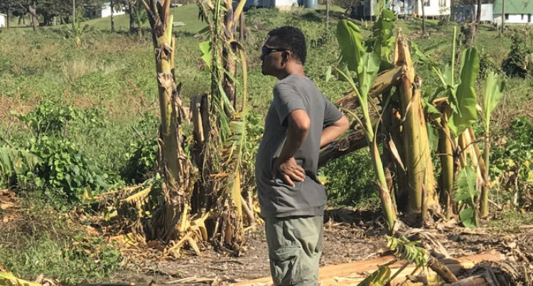 Agriculture Sector Hit Hard, Damage Estimated at $324,162