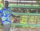 Lal Plans To Extend Poultry Farm
