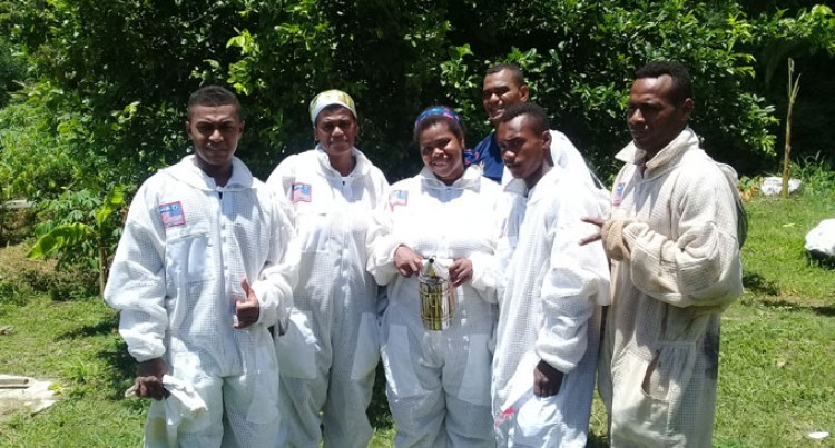 Timely Assistance For Young Bee Keepers