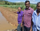 Farmers' Flood Worries Eased