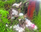Litter Still A Big Problem