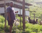 Funding boosts Pillay's goat farm, urges others to follow