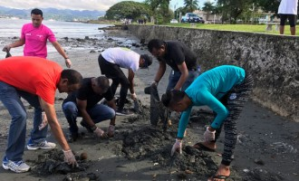 Koya, ANZ Staff Clean Up Suva Foreshore