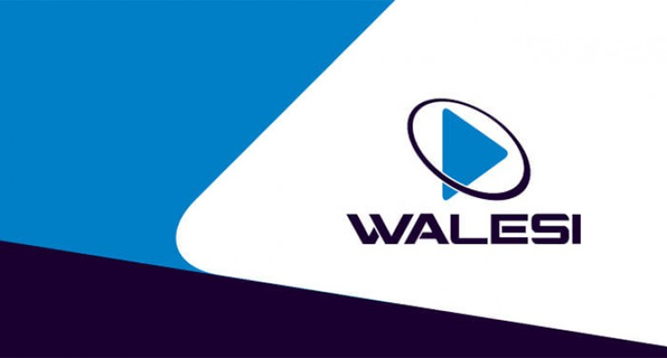 Analysis: Get It Right On Walesi