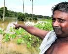 Chand In Despair As Flood Waters Damage Crops