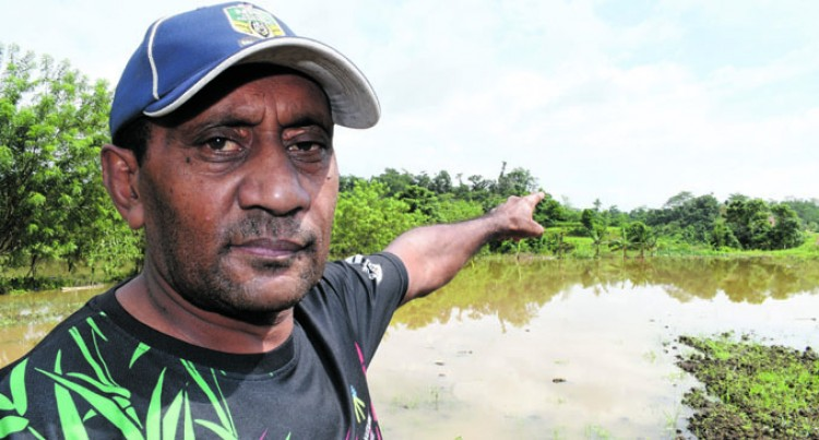 Farmer Loses Crops Worth $15K During Flooding