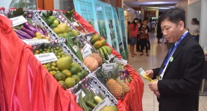 Tuan Nguyen from the Vietnam Institute of Policy and Strategy for Agriculutre and Rural Development inspecting produce at the Sofitel Fiji Resort in Nadi on April 9, 2018. Photo: Waisea Nasokia