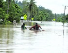 Man Swims Across Flooded Bridge To Save Cattle