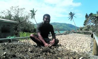 Farmer Laments Losses