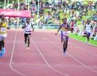 Gold Win For Kadavu