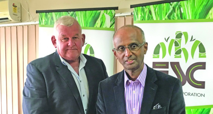 More Mechanisation For  The Sugar Industry