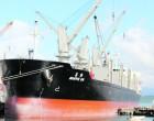 Magpie SW Offloads Bulk Cargo At Suva