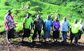 Navunimono Group Turns  To Ginger For Spiritual Growth