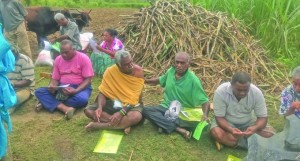 Yalavu cane farmers prepare for re-introducing sugar cane production in the area. Photo: Charles Chambers