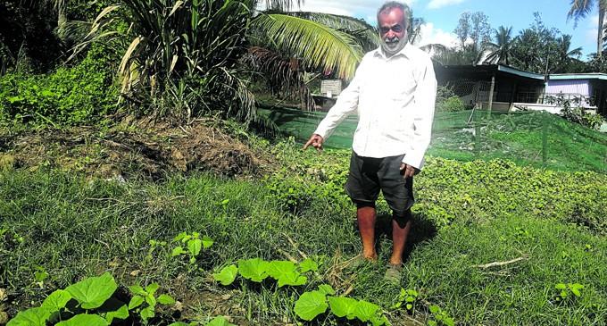 Farmer Recalls Day He Found Dead Infant