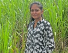 Preetika Shares Interest In Agri Industry