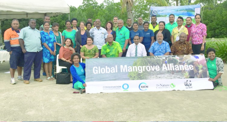 Awareness To Protect Mangrove Stocks