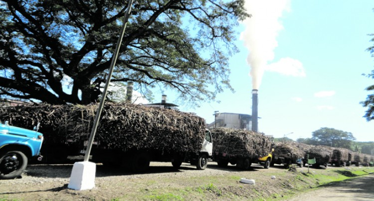 Farmers To Be Compensated For Any Mill Breakdown