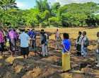 Tour Managers Fiji Invests In Green Tourism