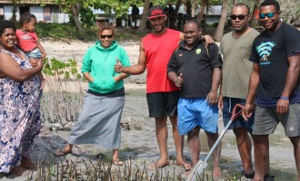Nacula Villagers Plant Mangroves To Save Eroding Coastline
