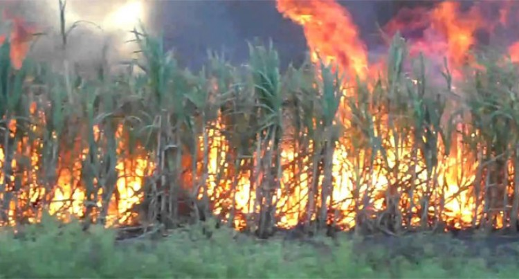 Cane Fire Damage Rarawai – Vatukoula – Tavua Transmission Line, EFL Work Round The Clock To Restore Service