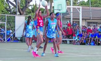 Suva Netters Dominate