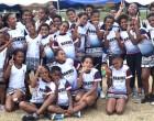 Primary School Netters Key: Tauvia