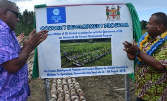 Progamme To Develop Coconut Industry Launched